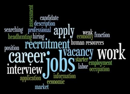 Career Market